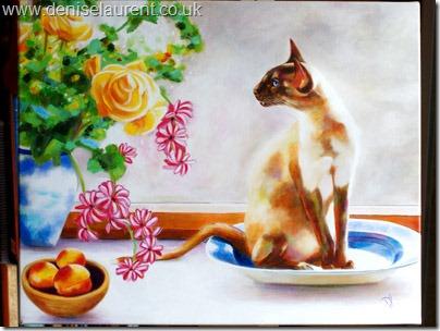 Lili Mei – A Beautiful Siamese Cat