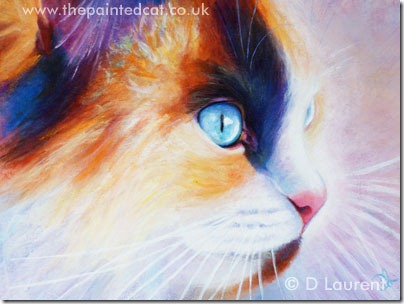 Lily – Painting Of A Rag Doll Cat SOLD