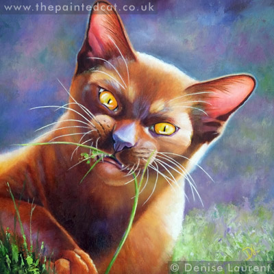 Young Brown Burmese Cat Painting – Sold